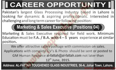 Marketing & Sales Executives Jobs - Jang Jobs ads 07 June 2015