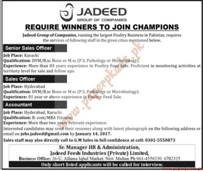 Jadeed Group of Companies Jobs