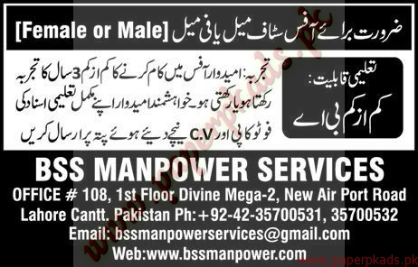 Male and Female Staff Required - Express Jobs ads 04 January 2017