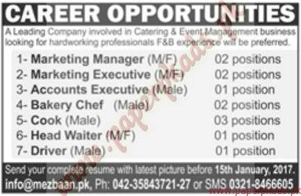 Marketing Manager Marketing Executives Accounts Executives Bakery Chef and Other Jobs