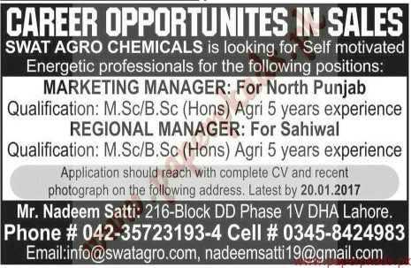 Marketing Managers & Regional Managers Jobs