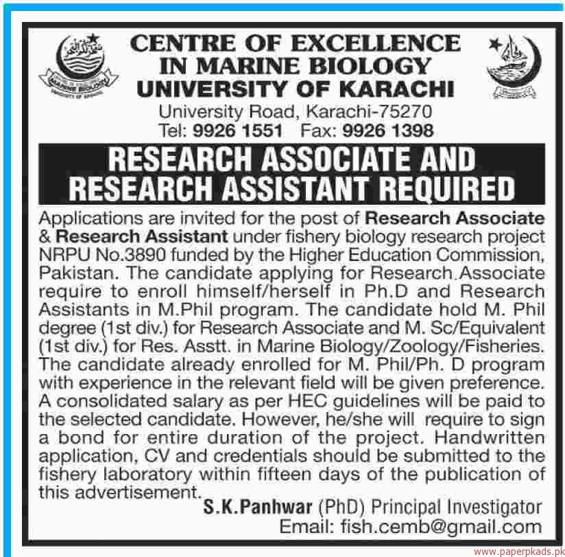 Centre Of Excellence In Marine Biology University Of Karachi Jobs