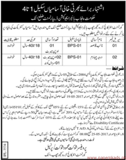 Government Degree College for Women Jobs 6