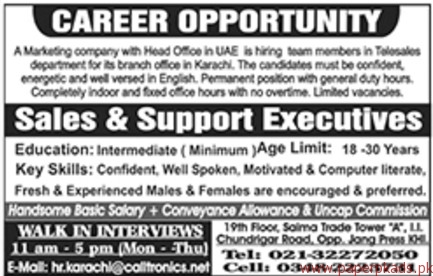 Sales & Support Executives Jobs