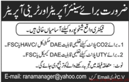 Senior Operators and Trainee Operators Required
