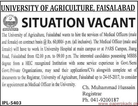 University of Agriculture Faisalabad Jobs