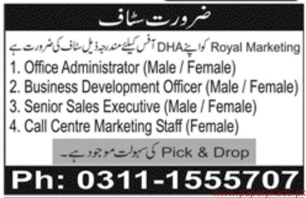 Royal Marketing Staff Required
