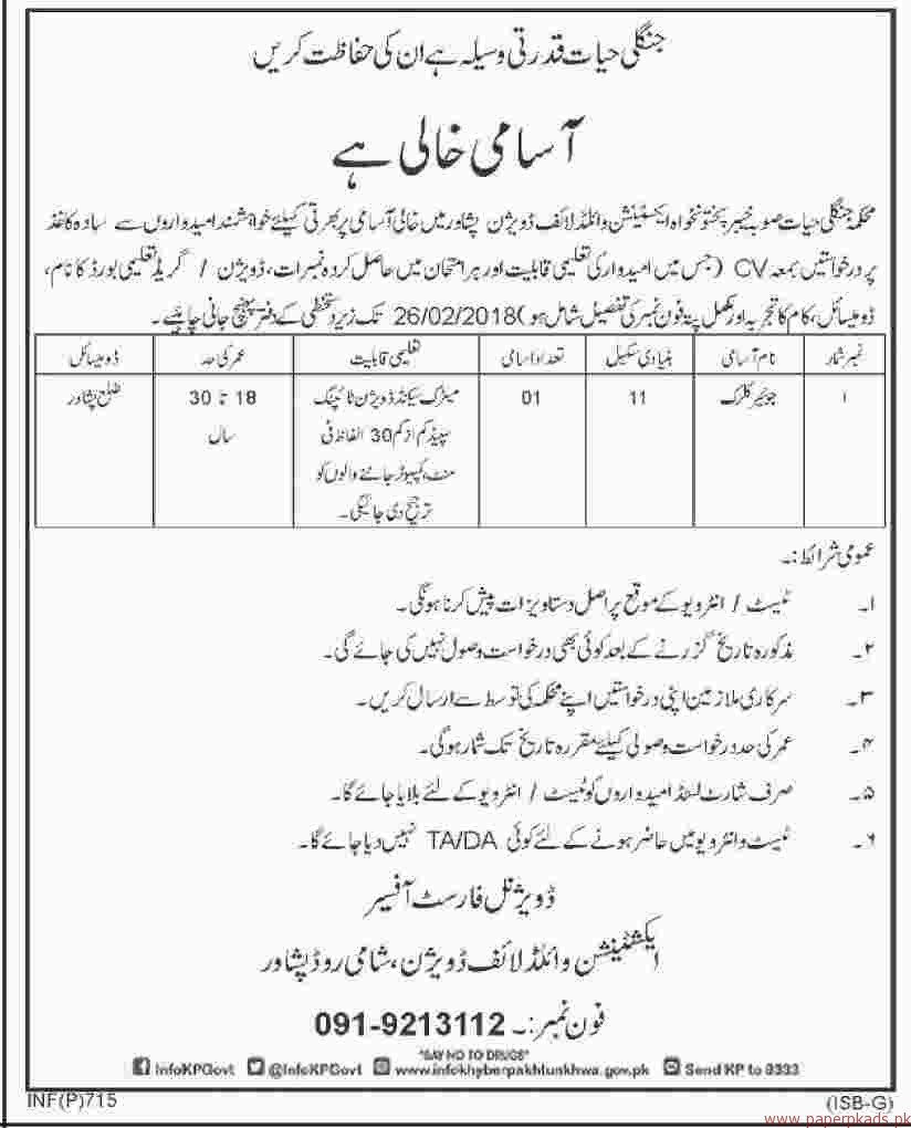 Junior Clerks Required