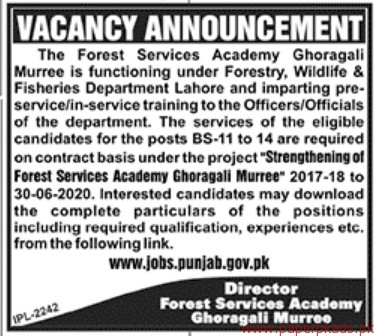 The Forest Services Academy Jobs 2018