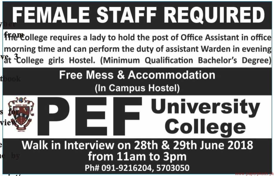 PEF University College Jobs 2018 Latest - 2