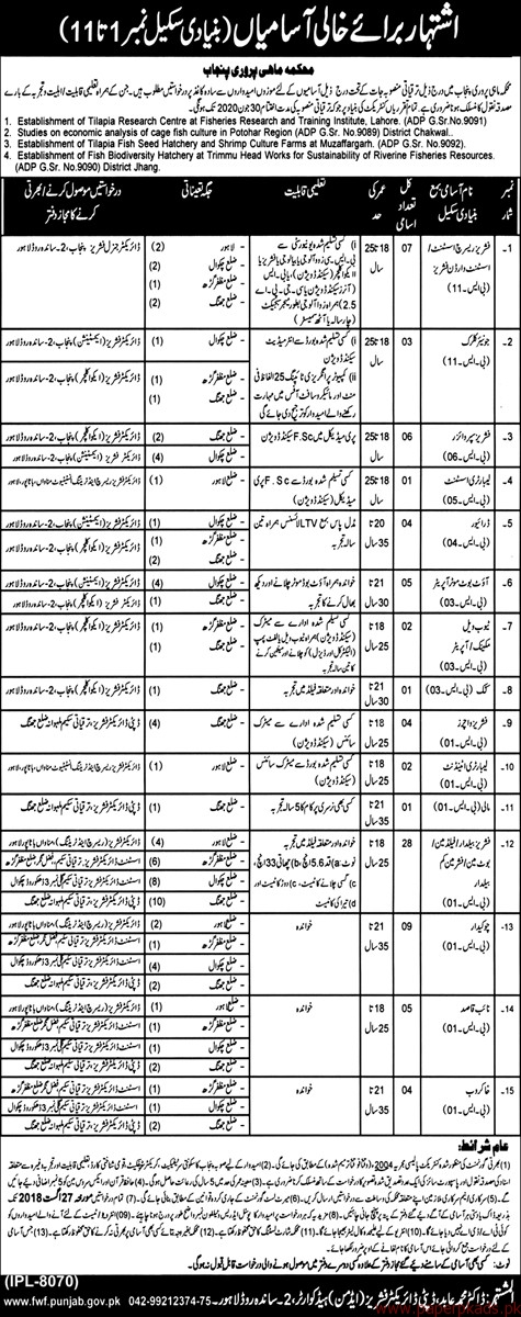 Assistant Junior Clerks Supervisors and Other Jobs