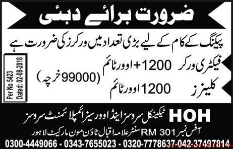 Factory Workers and Cleaners Jobs in Dubai