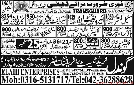 Steel Fixers Air Crafts Cleaners and Other Jobs in Dubai