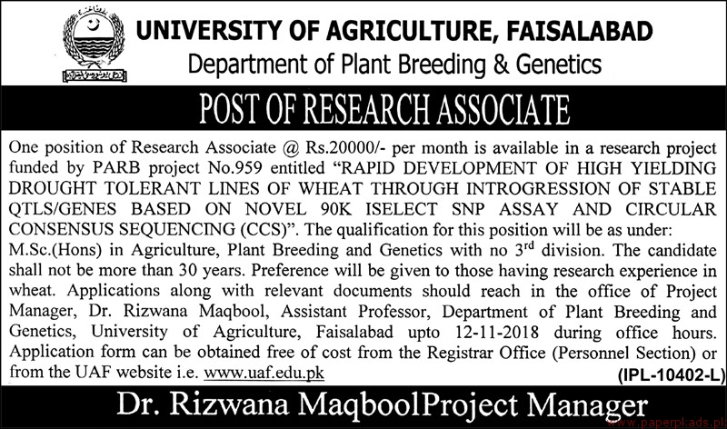 University of Agriculture Faisalabad Jobs 2018 Latest - 2