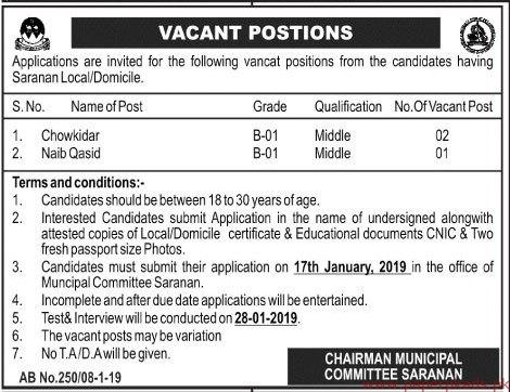 Municipal Committee Saranan Jobs 2019 Latest