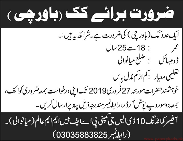 DSG Company Jobs 2019 Latest