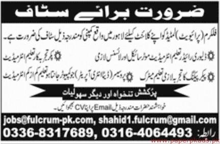 Fulcrum Private Limited Jobs 2019 Latest