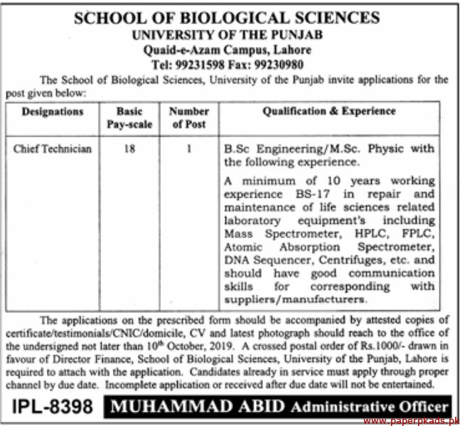 University of the Punjab School of Biological Sciences Jobs 2019 Latest