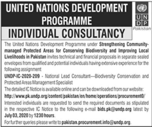United Nations Development Programme UNDP Jobs June 2020