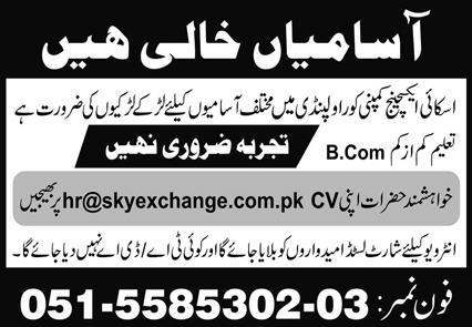 Sky Exchange Company Jobs June 2020