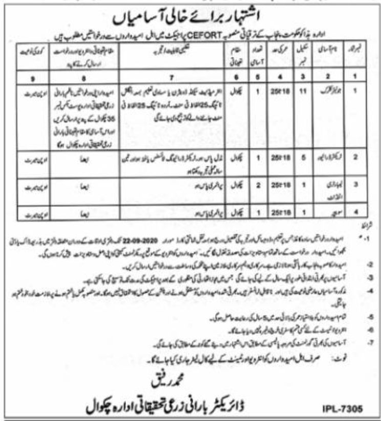 Agriculture Department Chakwal Jobs August 2020