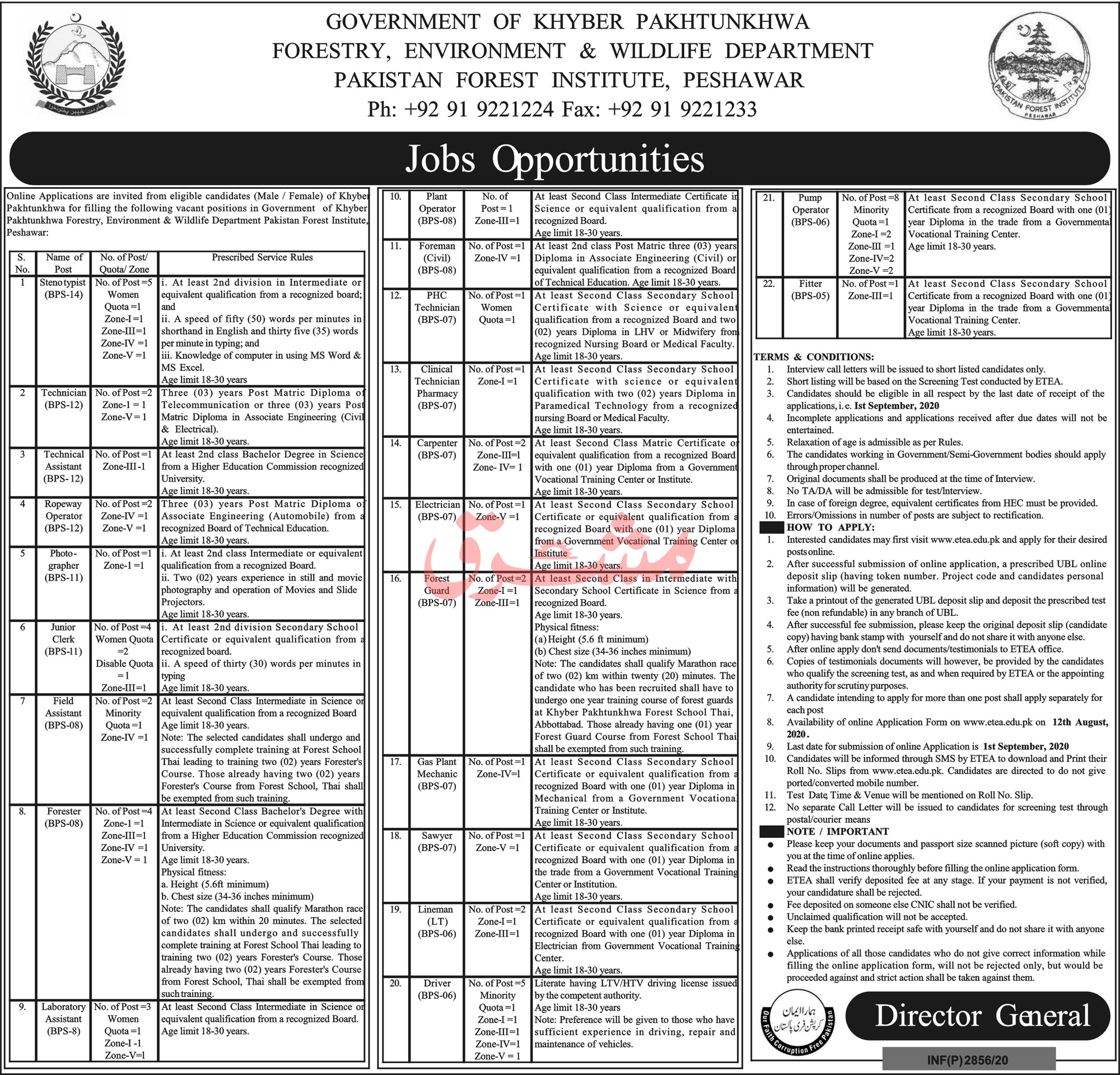 Government of Khyber Pakhtunkhwa Forestry, Environment & Wildlife Department Jobs August 2020