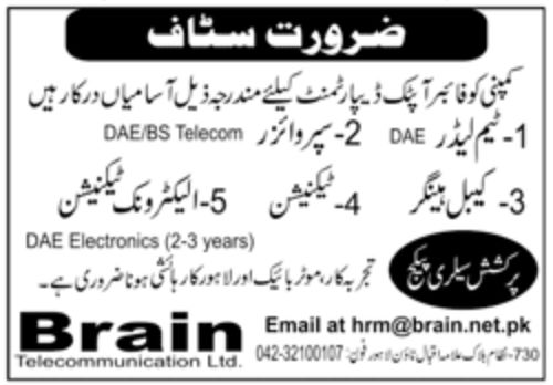 Brain Telecommunication Ltd Jobs September 2020