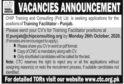 CHIP Training and Consulting Jobs October 2020