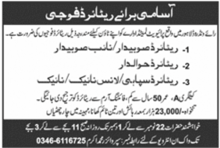 Private Limited Sector Jobs November 2020