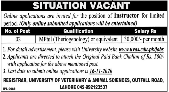 University of Veterinary & Animal Sciences Jobs November 2020