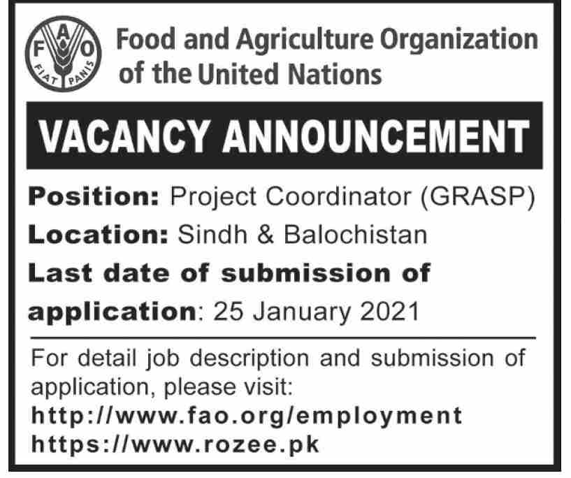 Food and Agriculture Organization Jobs January 2021