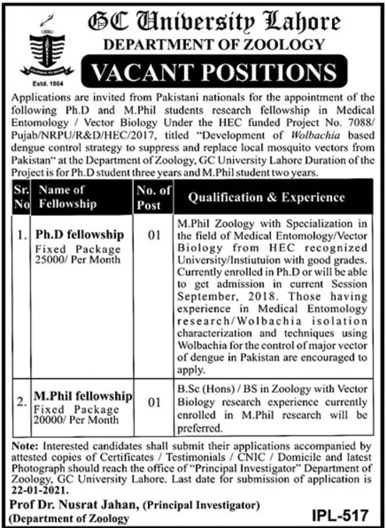 GC University Lahore Department of Zoology Jobs January 2021