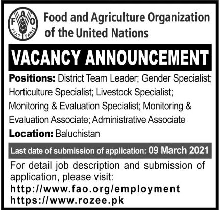 Food and Agriculture Organization of the United Nations Jobs March 2021
